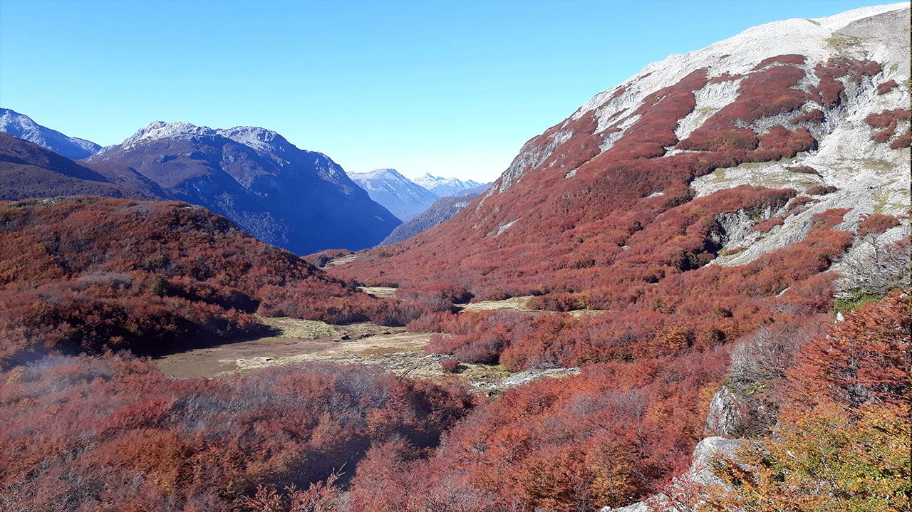vista01